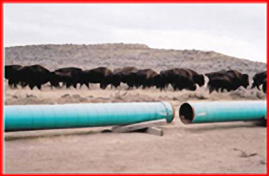 Western Pipelining Photo